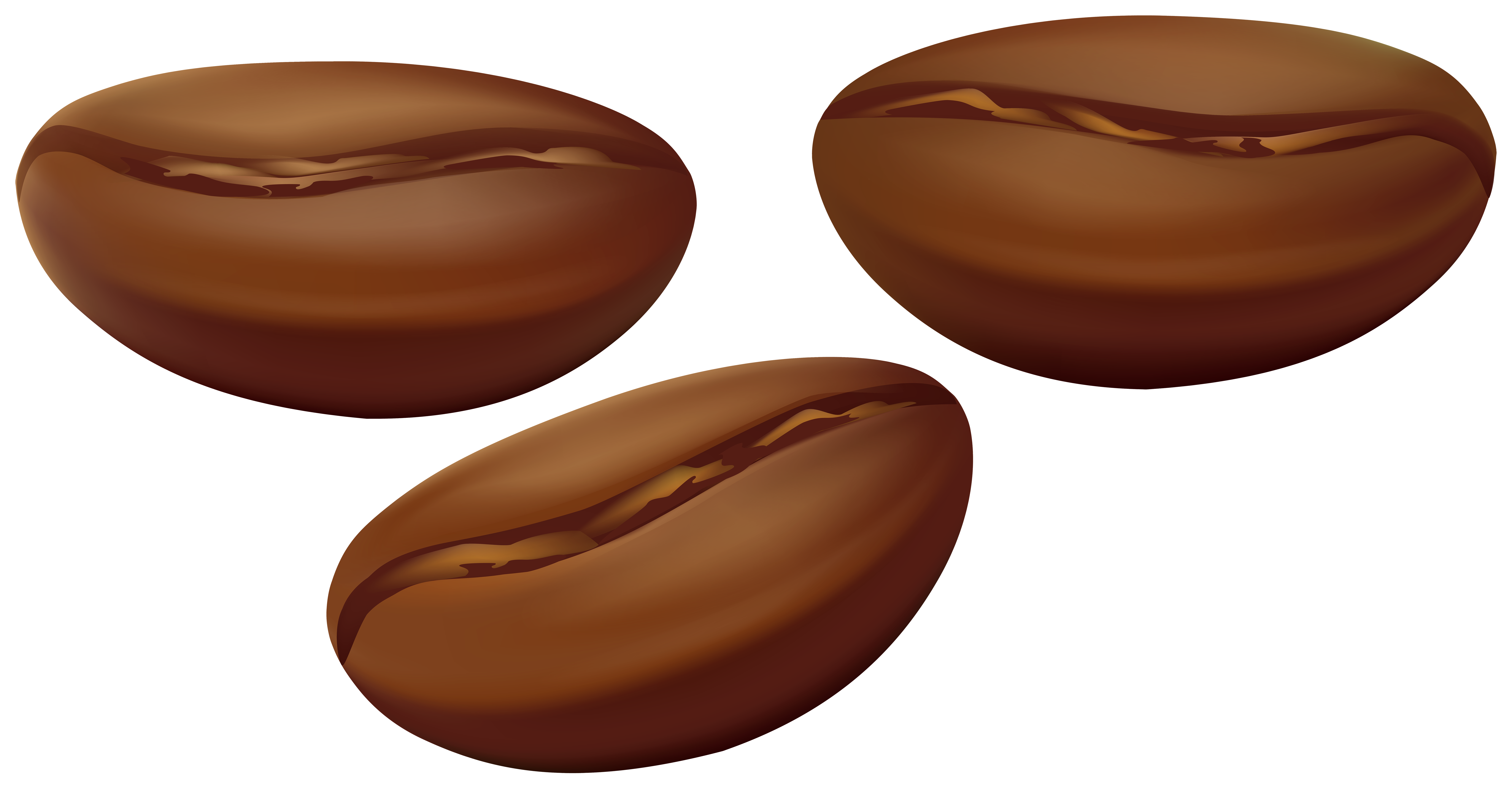 Peanuts clipart transparent background. Coffee beans png clip