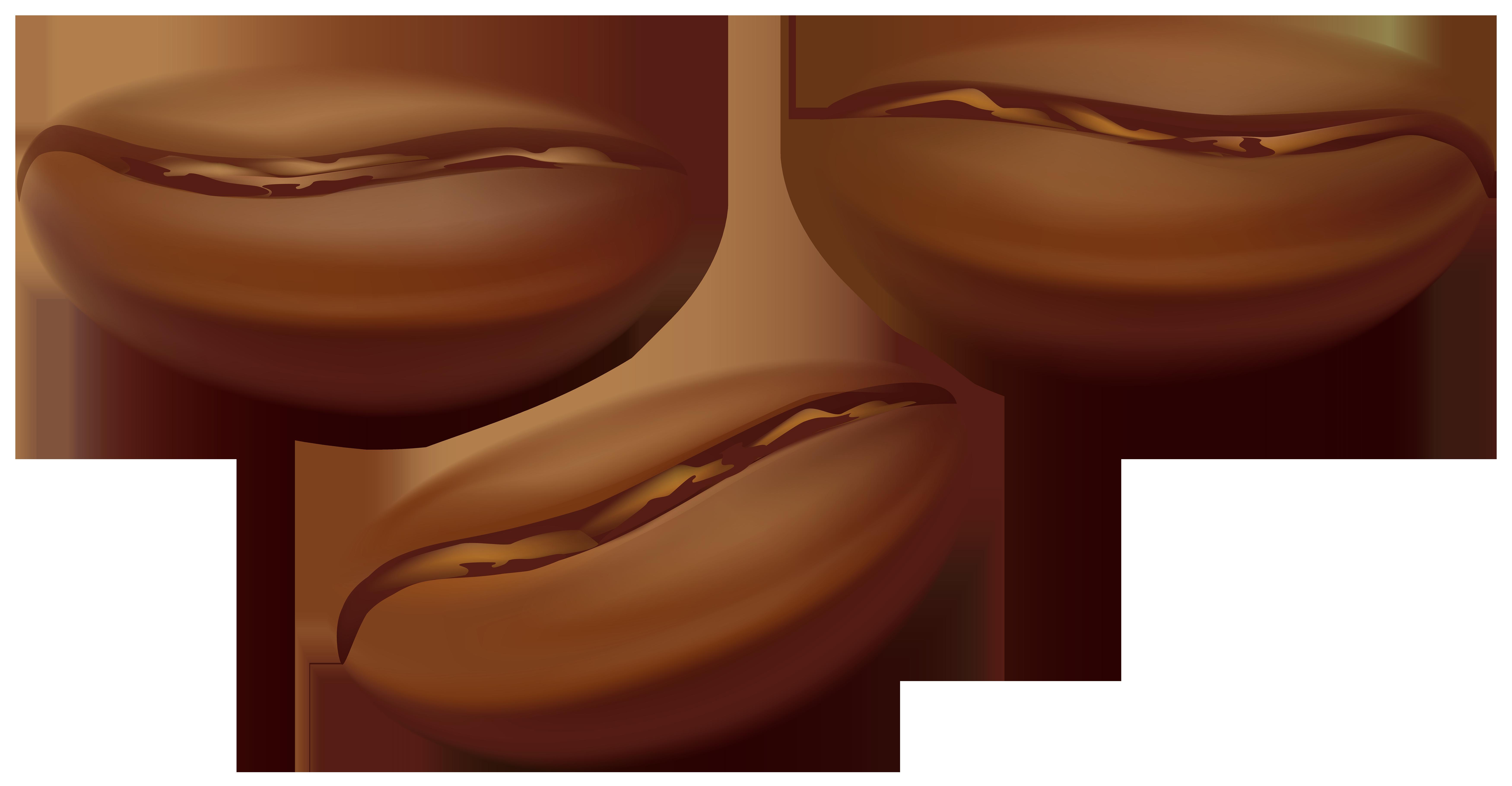 Beans clipart transparent. Coffee png clip art