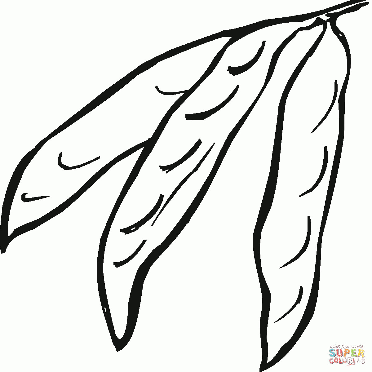 Coloring page green many. Bean clipart winged bean