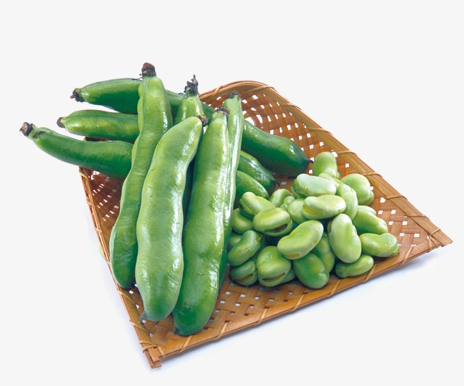 Beans clipart broad bean. Soybean png image and