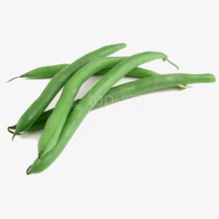 Beans clipart french bean. Free green cliparts silhouettes