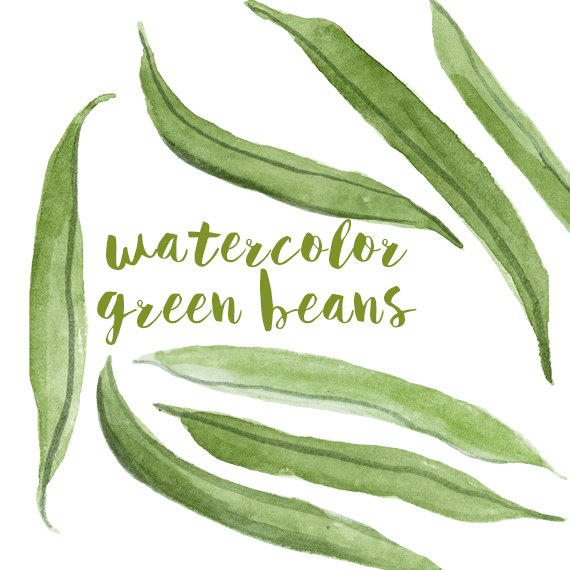 Watercolor green clip art. Beans clipart french bean