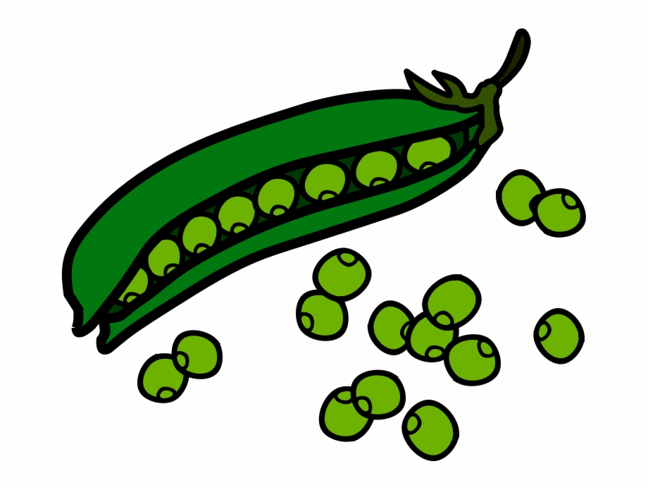 Green food peas free. Beans clipart french bean