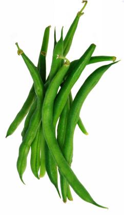 Beans clipart long bean. French best in season