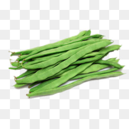 Png images vectors and. Beans clipart long bean