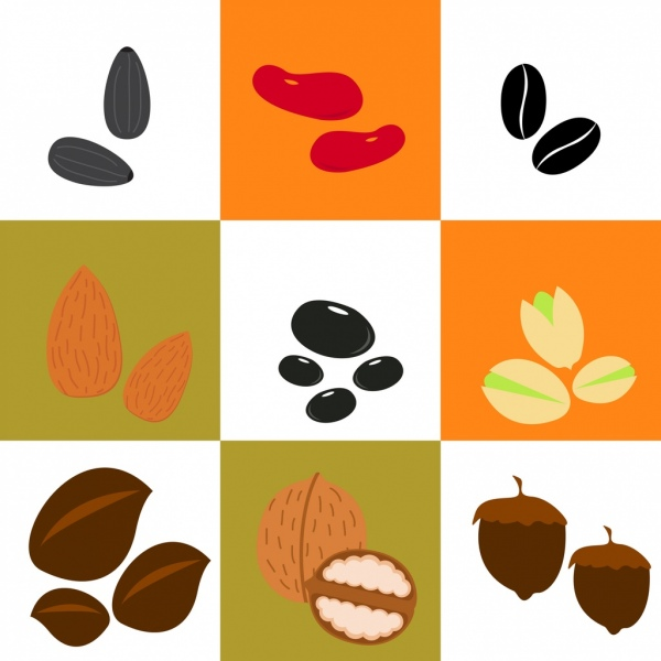 Beans clipart nuts. Bean and background various