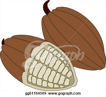 Beans clipart nuts. Cocoa bean powder free