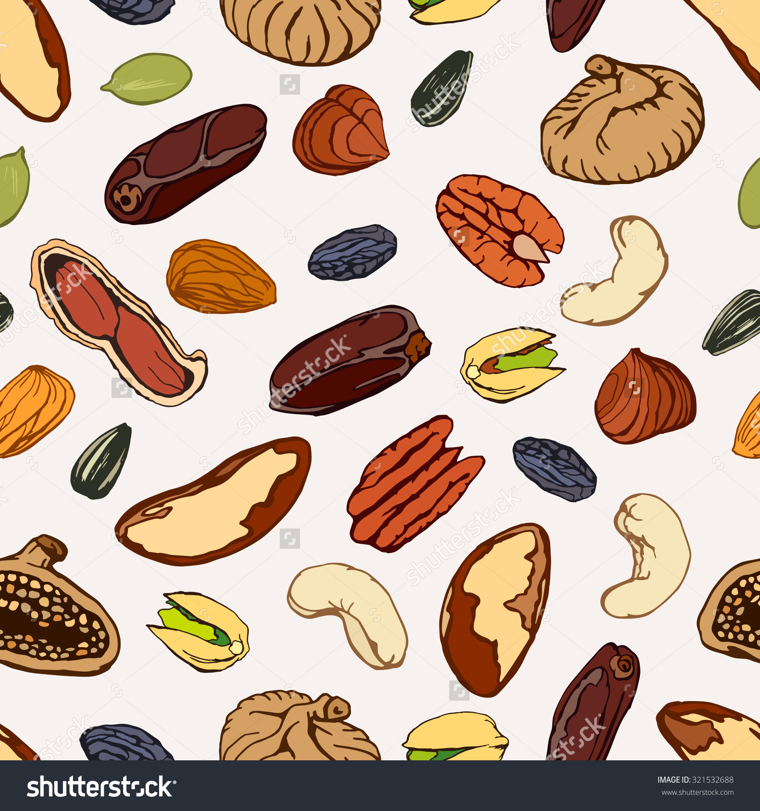Nut fruit clipground seeds. Beans clipart nuts