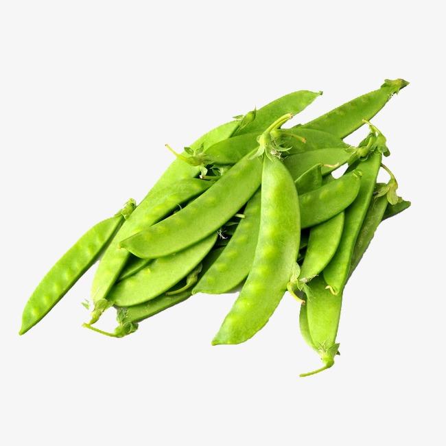 beans clipart pea