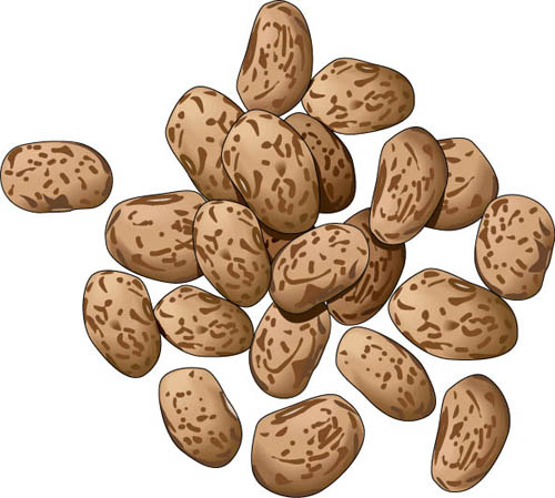Cliparts free download clip. Beans clipart pinto bean