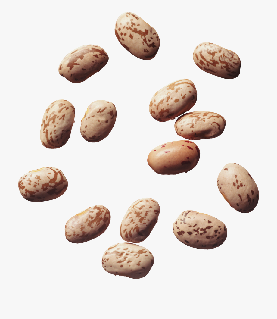Png images free download. Beans clipart pinto bean