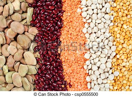 Bean pencil and in. Beans clipart pulse