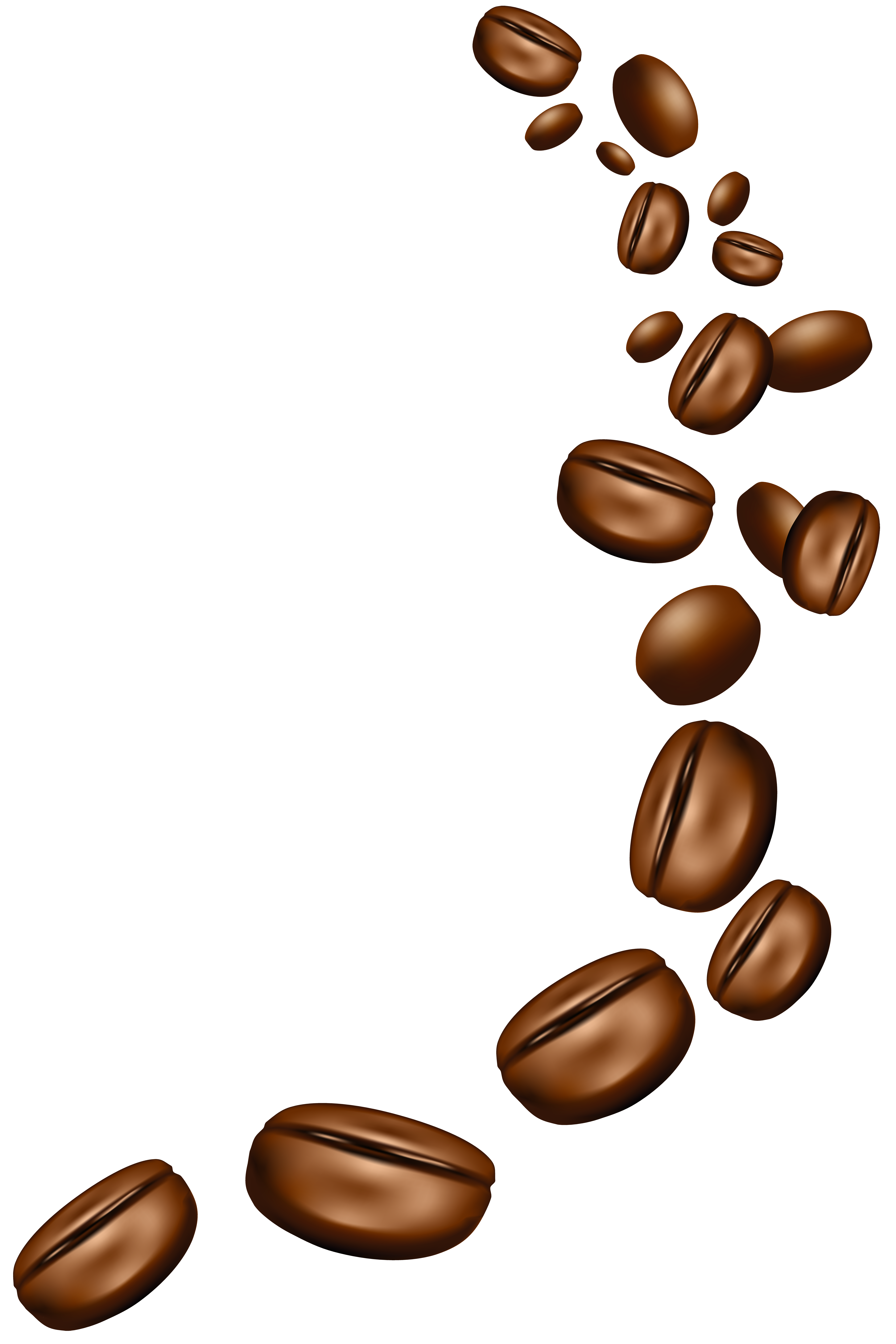 Beans clipart transparent. Coffee png image gallery