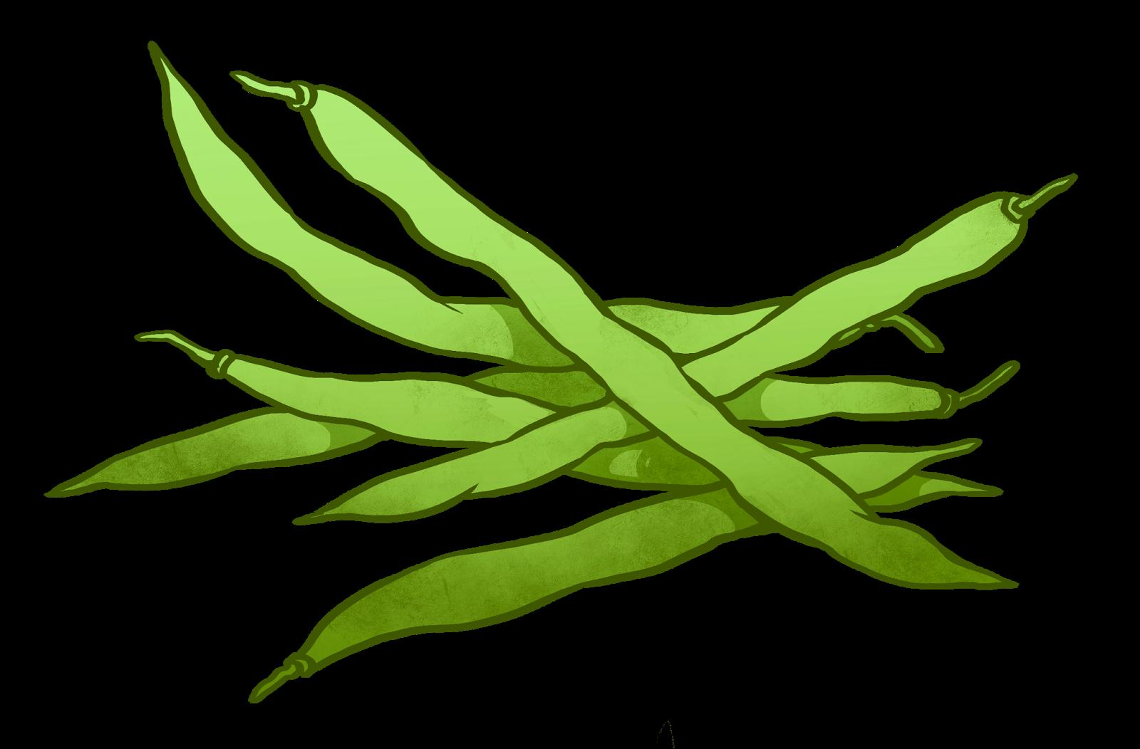 Green bean clip art. Beans clipart vector