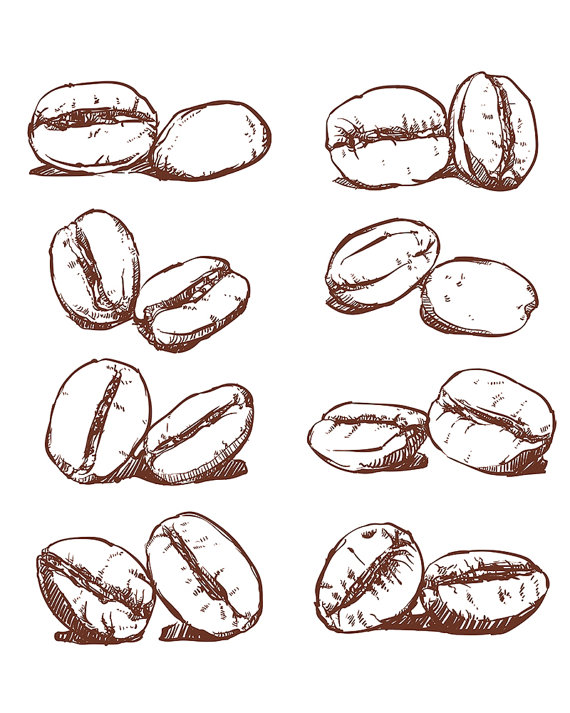 off sale coffee. Beans clipart vector