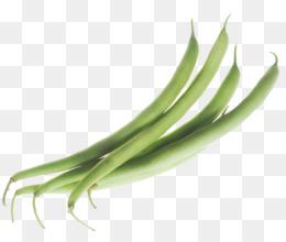Lima runner green vegetable. Beans clipart winged bean