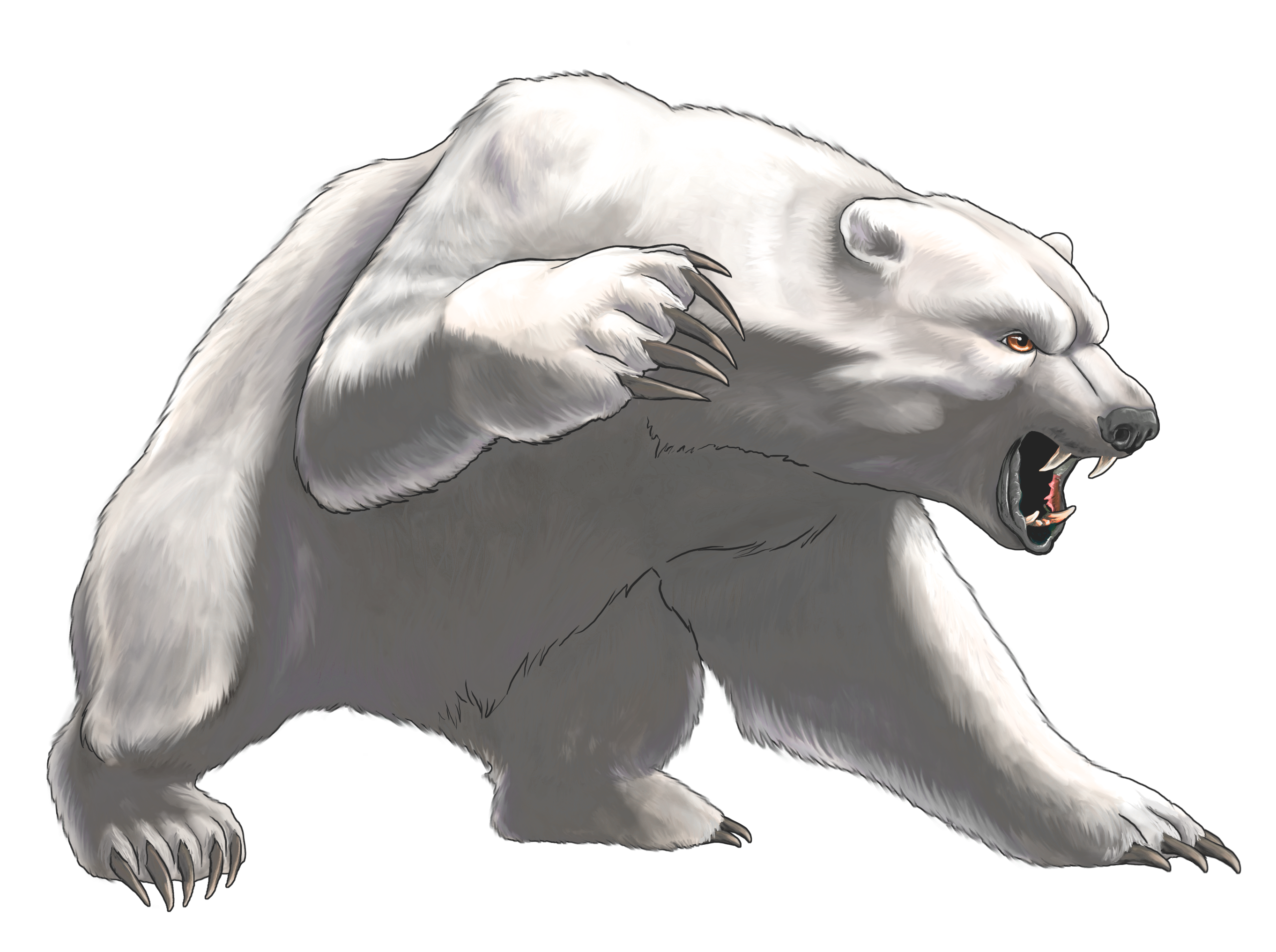 Angry white png best. Clipart bear omnivores