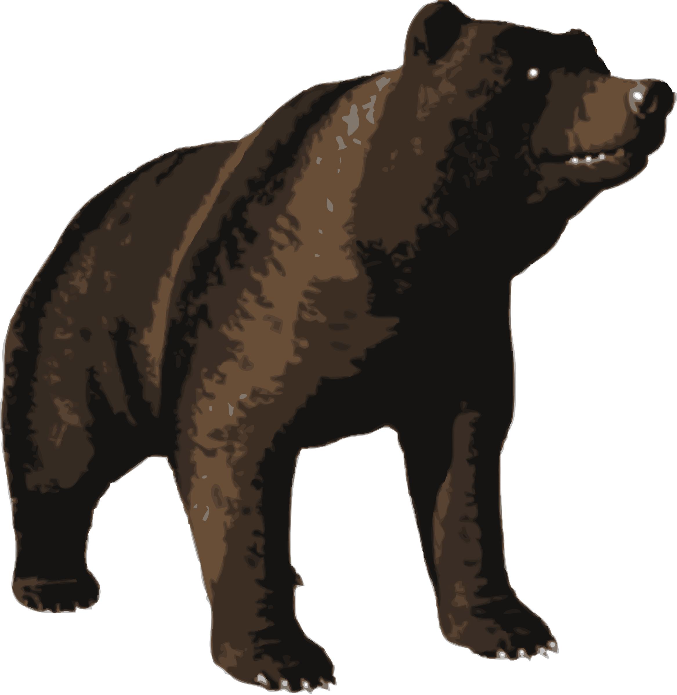 Bear clipart beruang. Brown