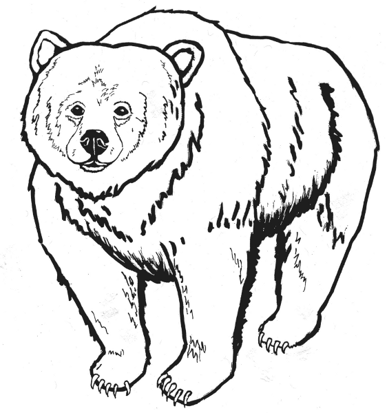 Free images download clip. Bear clipart black and white