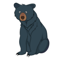 Bear clipart clip art. Free pictures graphics illustrations