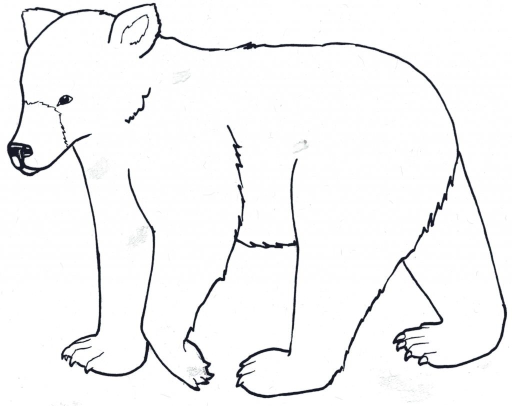 Polar drawing at getdrawings. Bear clipart easy