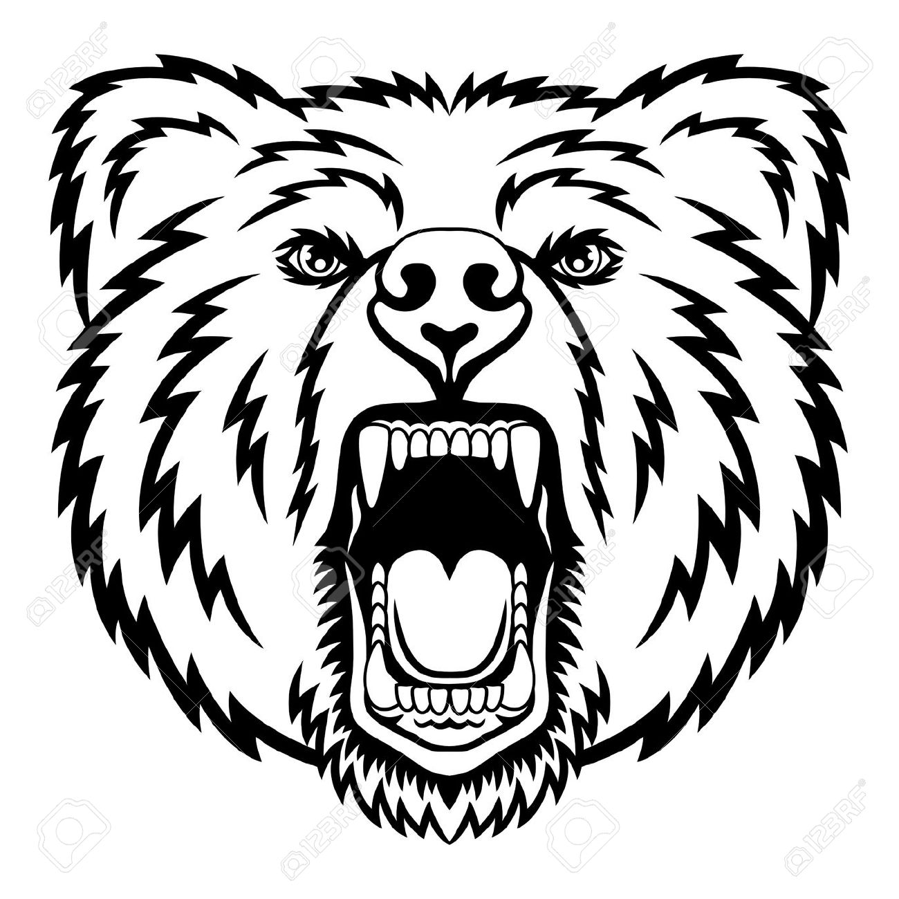 Polar head drawing at. Bear clipart face