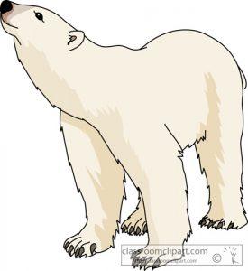 Polar free art clipartix. Bear clipart kid