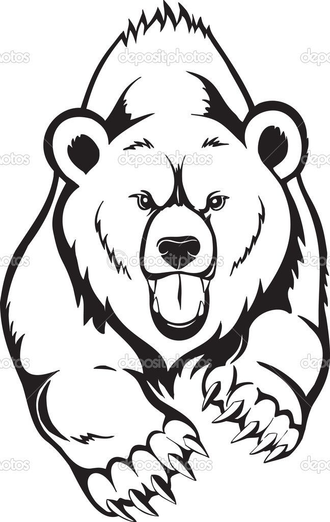 Angry face line drawing. Bear clipart mad bear