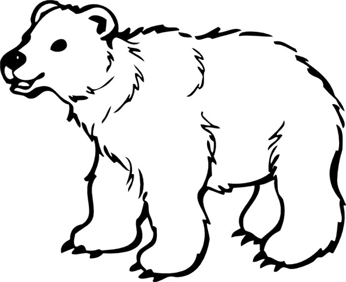 Black bear drawing at. Bears clipart outline