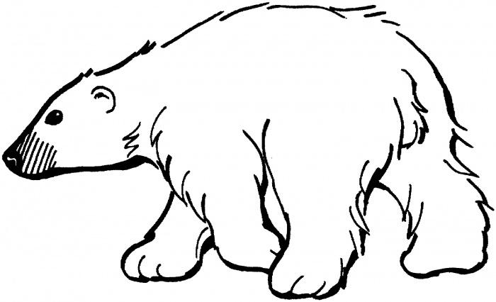bear clipart outline