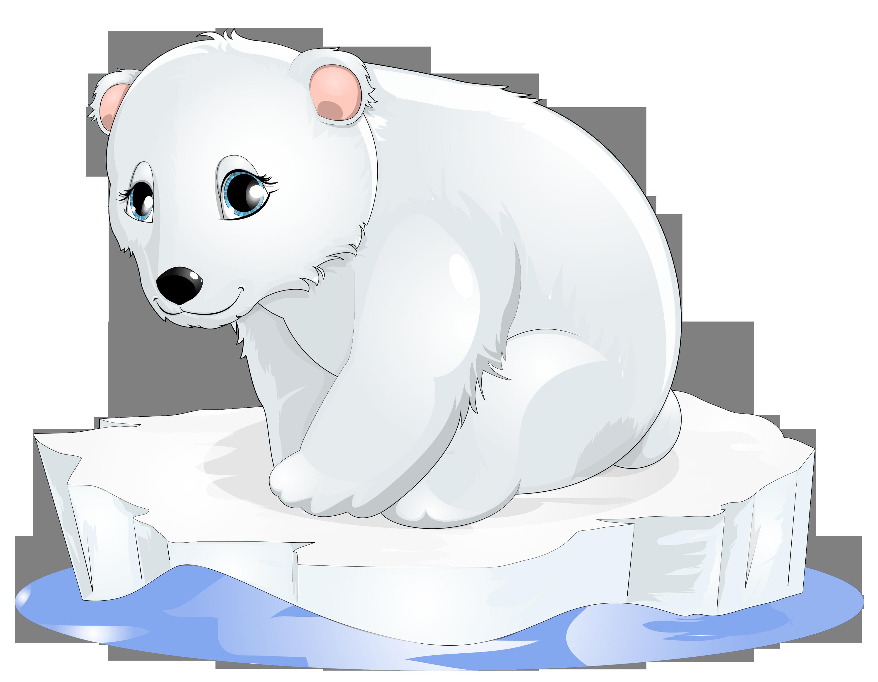 Polar transparent gallery yopriceville. Clipart bear carnivore