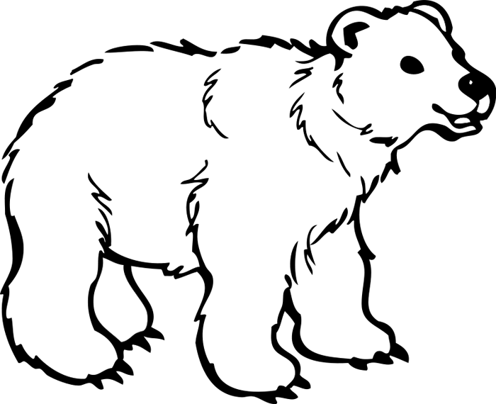 Clipart bear bear cub. Polar animations white