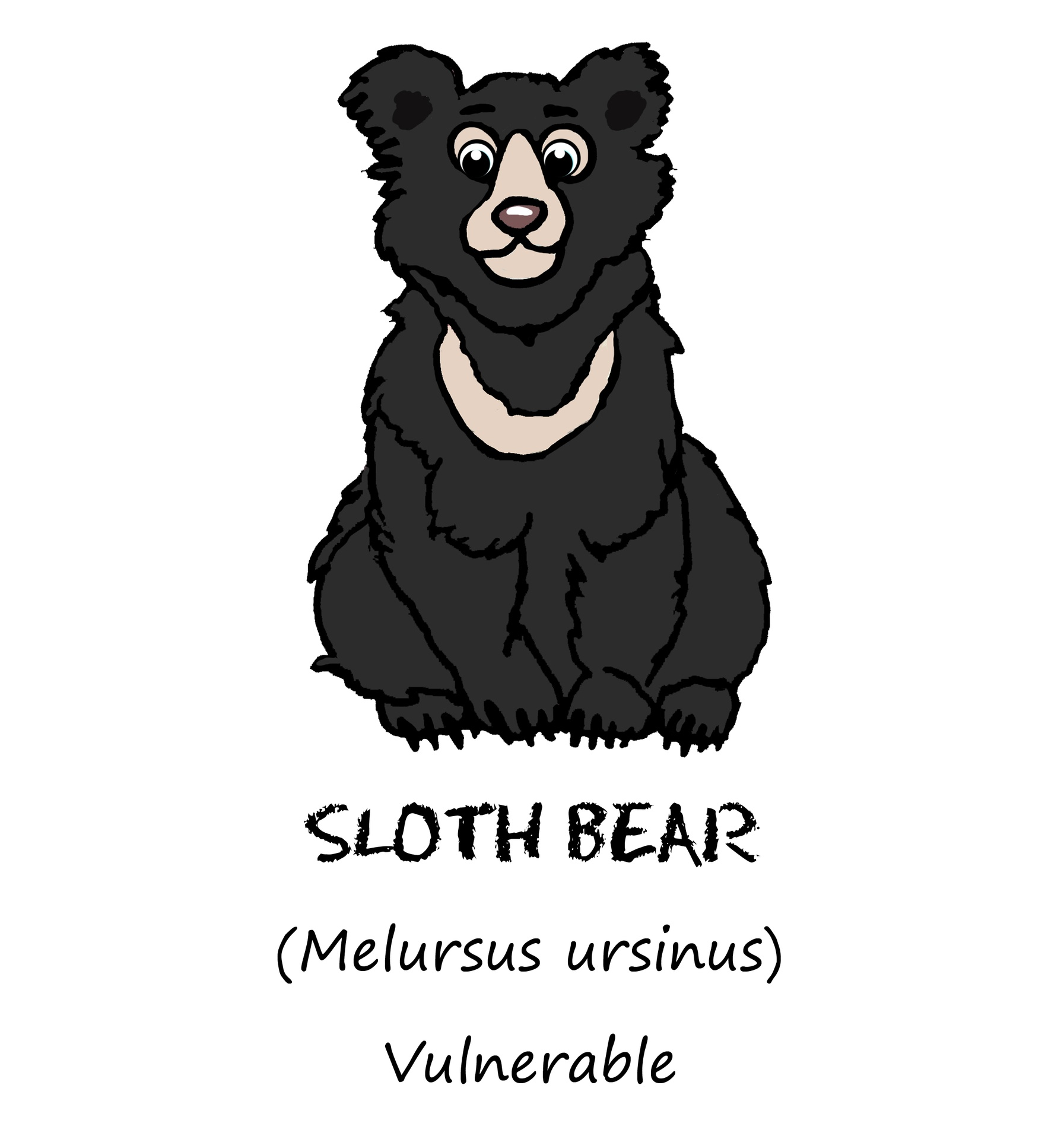 T shirt . Bear clipart sloth bear
