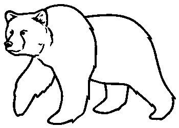 Bear clipart spirit bear. Drawing at getdrawings com