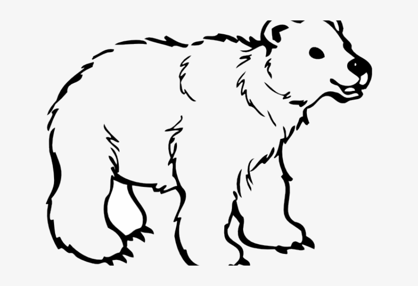 Mammal free black and. Clipart bear spirit bear