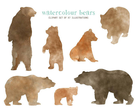 Bear clipart watercolor. Woodland