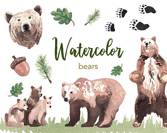 Bear clipart watercolor. Watercolour set commercial use