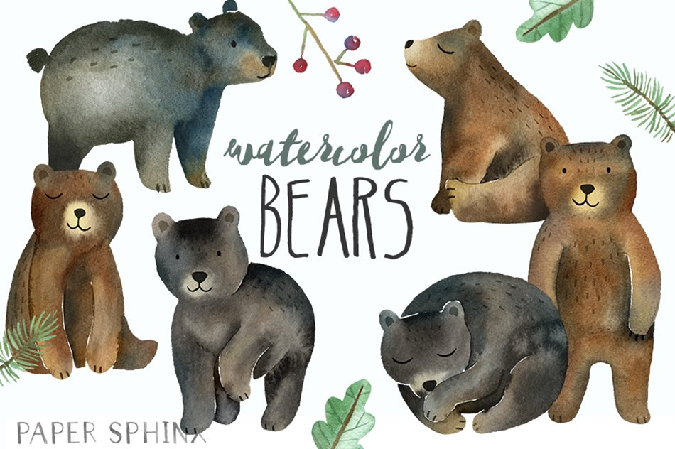 Bears . Bear clipart watercolor