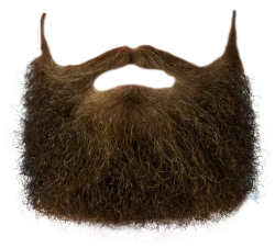 Download free png transparent. Beard clipart brown beard