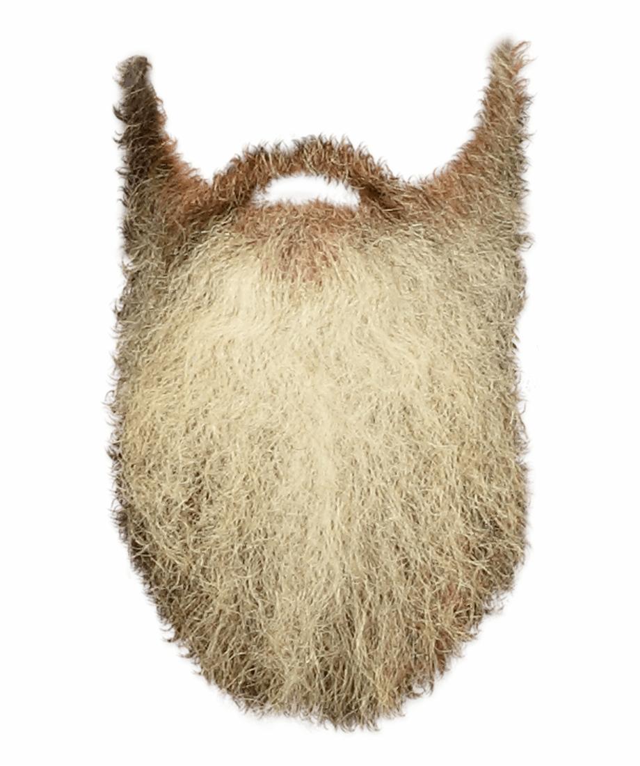 Beard clipart long beard. People beards transparent background