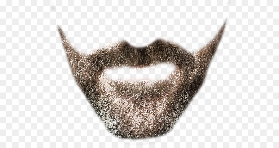 Clip art png download. Beard clipart real