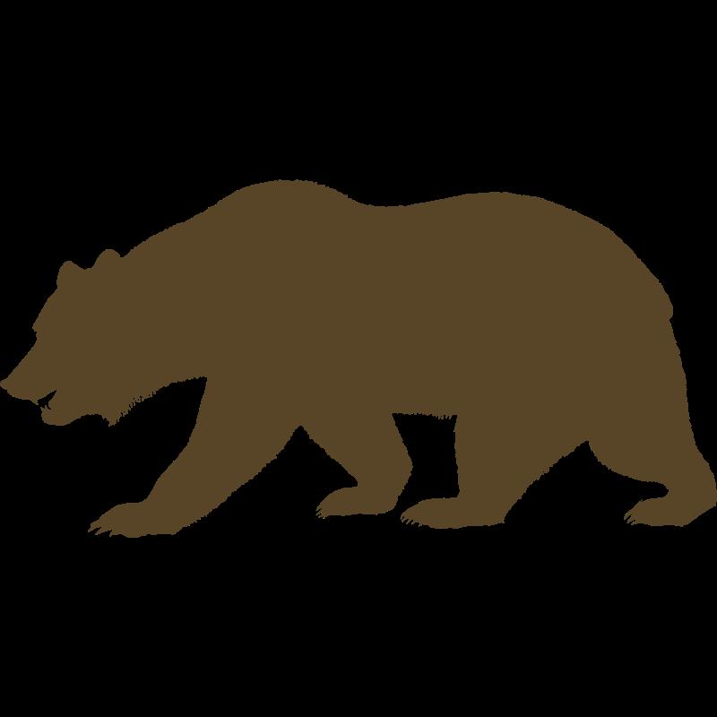 Outline print outs pinterest. Bears clipart bear california
