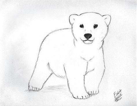 Bears clipart bear cub. Pinterest