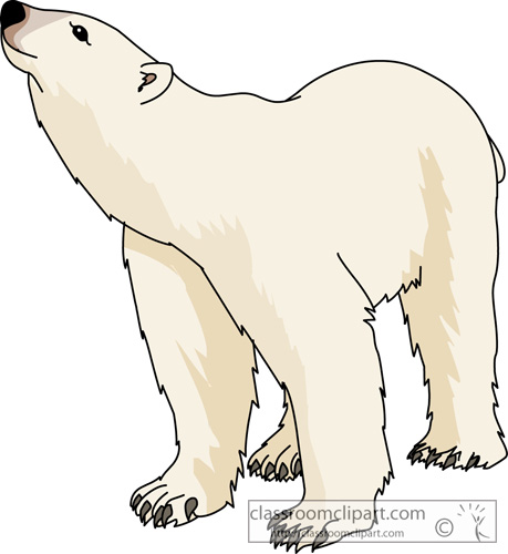 Free bear pictures graphics. Bears clipart clip art