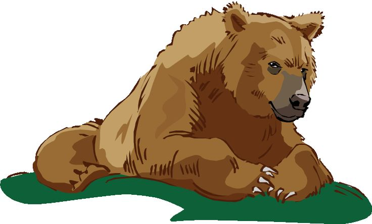 best images on. Bears clipart grizzly bear