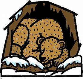 Storybookstephanie hibernation theme sensory. Bears clipart hibernating