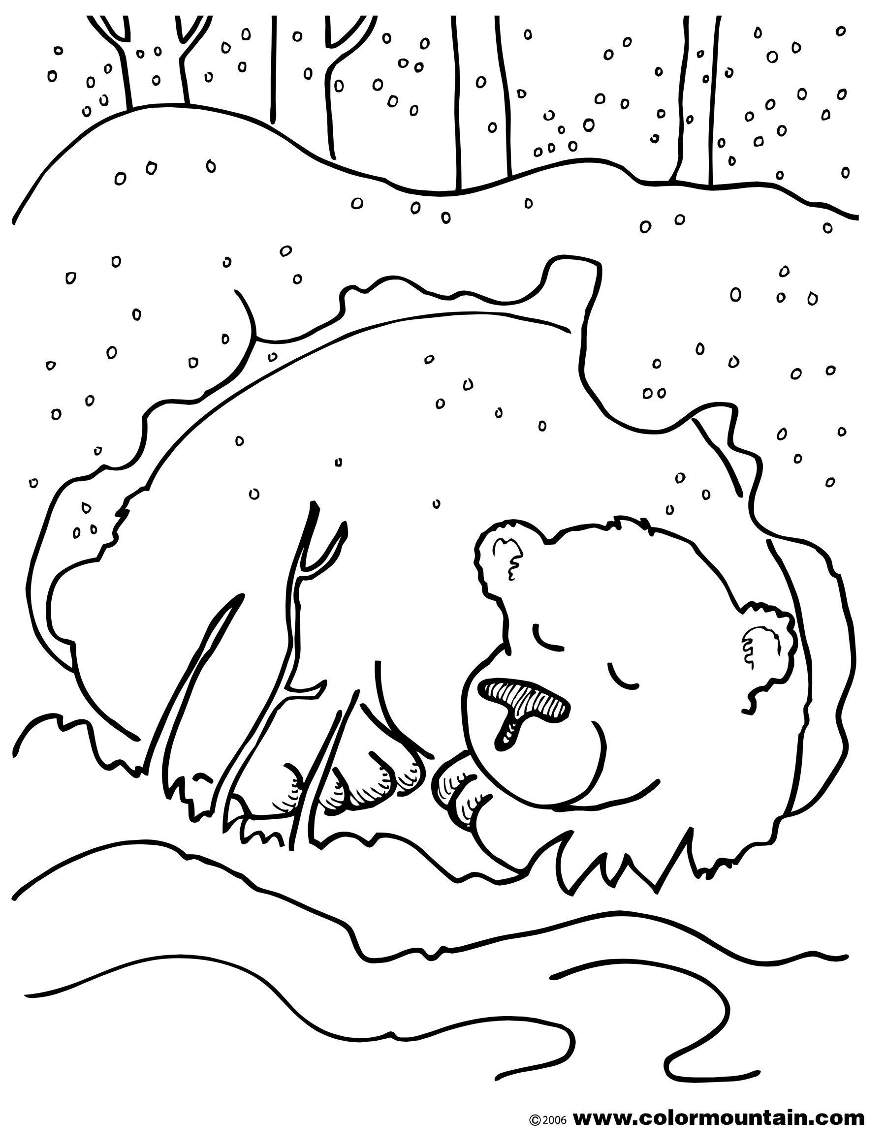 Bear color sheet coloring. Bears clipart hibernating