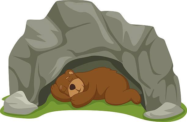 Bear station . Bears clipart hibernating