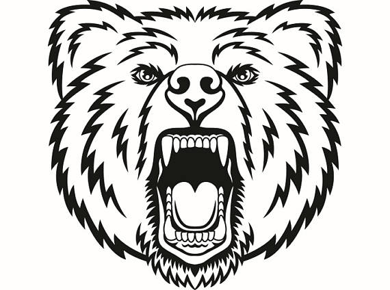 Bears clipart mascot. Grizzly bear head face