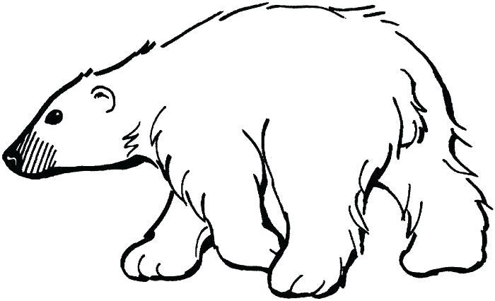 Free polar bear cartoon. Bears clipart outline